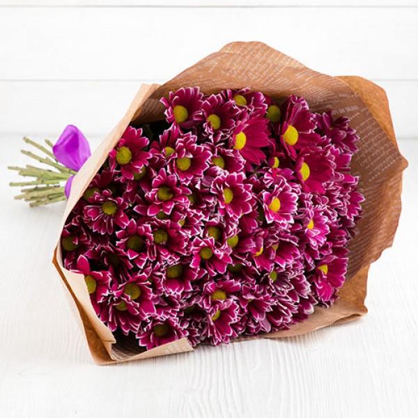 Букет хризантема кустовая фиолетовая 17 шт