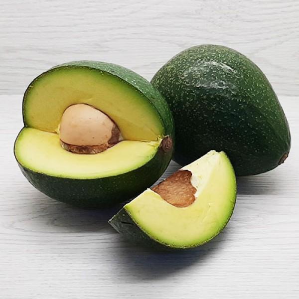 Авокадо Гигант